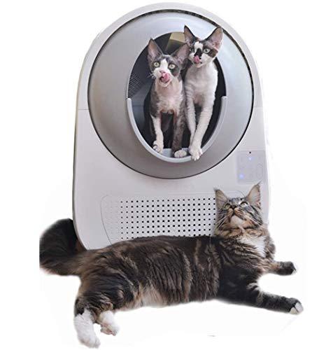 FengJ Toilette Automatique pour Chat,Litière à Voix...