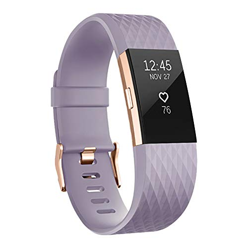 UMAXGET Compatible with Fitbit Charge 2 Bands, Soft Silicone Sport Adjustable Wristband Special Edition with Rose Gold Buckle for Men Women, Lavender, Small