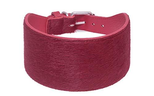 BB_Bardog Collar de galgo 100% piel de vacuno italiana, estilo caballo, hecho a mano (S, rojo)