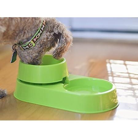 Light Blue Cat Kitten Dish Dog Puppy Feeder Anti Ant Free Pet Bowl No More Ants