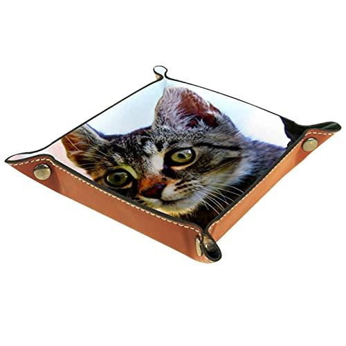 Caja de reloj de cuero con patrón de gato para accesorios