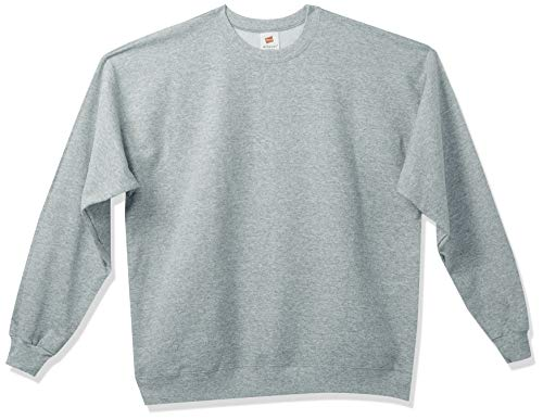 Hanes mens Ecosmart Fleece Sweatshi…