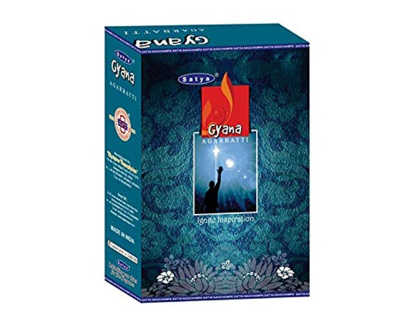 年金地下室無限大Satya Gyana Incense Sticksボックス240?gmsボックス