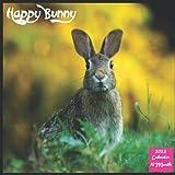 Happy Bunny 2022 Calendar: Official Rabbit Calendar 2022, 16 Month Square Calendar