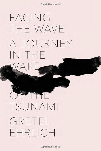 Image of Facing the Wave: A Journey in the Wake of the Tsunami