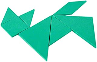 Fun with Magnets Green Educational Tangram - Logic Puzzle & Maths Game (Pack of 1)
