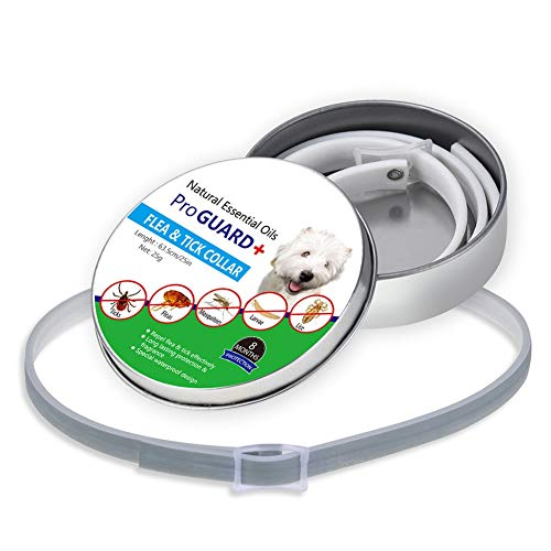 tiffan1990 Tamaño Ajustable Collar Antiparasitos Antipulgas para Mascota Pequeño Mediano Grandes y Gatos contra Pulgas Garrapatas y Mosquitos 8 Meses de Protección de Efectividad Repelente