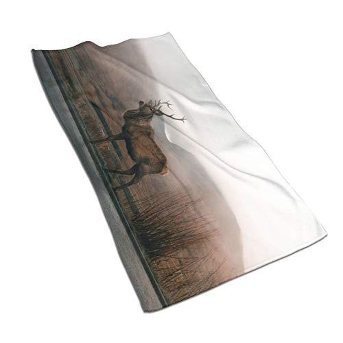 Sika - Toallas de baño para ciervos de secado rápido de alta absorción de calidad súper suave de algodón para baños, piscinas, cocinas de hotel (30,5 x 60,5 cm)