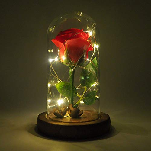 Emyln Beauty and The Beast Rose, Enchanted Rose Flower with 10 LED USB Lights in Glass Dome on a Wooden Base for Lover, Weddings, Anniversaries, (Red)