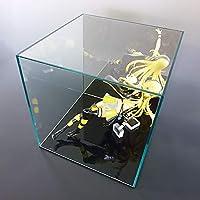 【平台座 黒】 ガラス色コレクションケース 背面ミラー W300mm H300mm D300mm