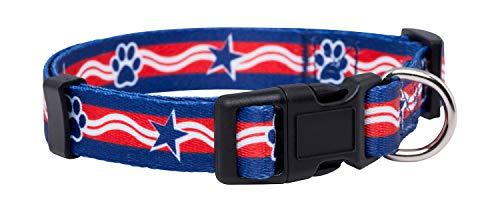 Native Pup American Flag Dog Collar (Small, Paws)