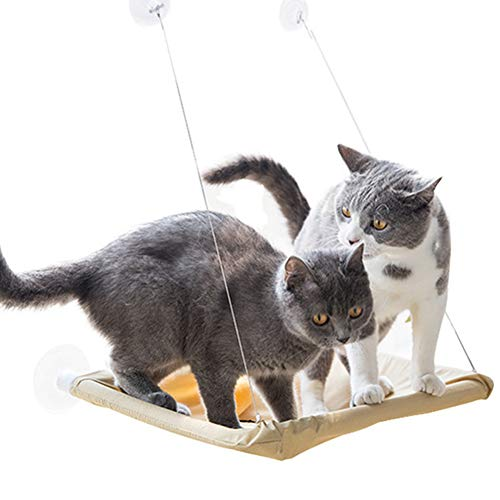 Icegrape Katten Hangmat Zuig Raam Muur Gemonteerd Hangend Bed Kitten Rusten Zonnige Stoel