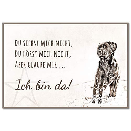 ZAUBERBILD Hundeschild Warnung | Labrador 'Ich bin da!' | Warnschild Vorsicht Hund | 25x17cm Alu