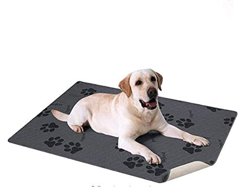 Reusable Puppy Pads Canada