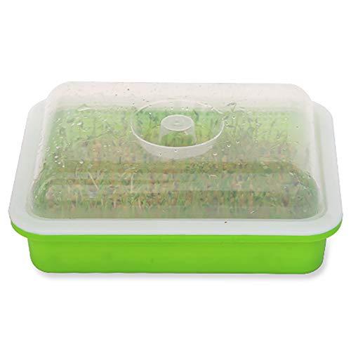 QQSS Keimschalen für Sprossen mit Deckel BPA-freies Keimungsset Für Sojabohnensprossen Züchter Weizengras Züchter Geeignet für Küche, Balkon, Garten