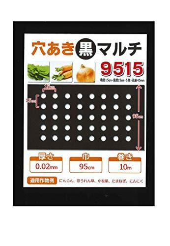 ナチュールアミ 穴あき黒マルチ9515 にんじん・菜っ葉用 10m
