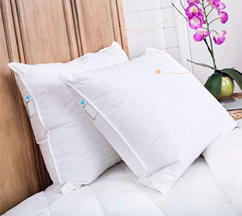 Continental Bedding Superior 100% Down 700 Fill Power Hungarian White Goose Down Pillow (Standard) (SP100-S)