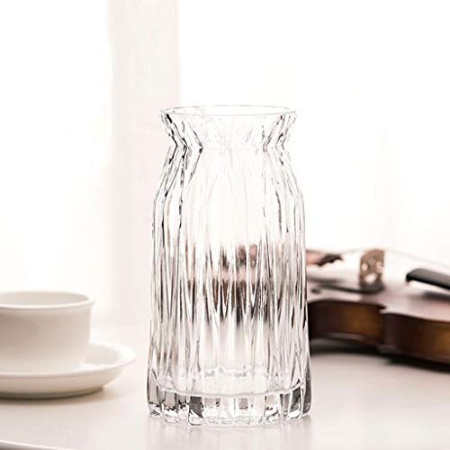 Geometric Glass Vase Table Craft Decoration Vase/Hydroponic Color Vase JSFQ (Color : Clear)