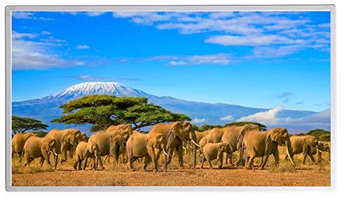Infraroodverwarming met digitale thermostaat voor stopcontact, elektrische verwarming met oververhittingsbeveiliging, TÜV-getest 450W Tanzania Kenia Afrika Elefanten