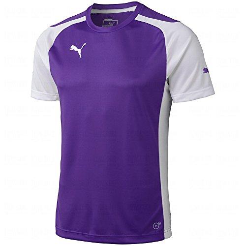 Puma Men's Speed Jersey, Large, Team Violet-White