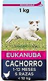 Eukanuba Alimento seco para cachorros de razas pequeñas con pollo 1 kg