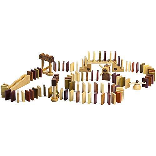 GG-kids toys Famille de Jeu en Bois Blocs de Construction en Bois en Bois Massif intelligents Jouets éducatifs pour Enfants, 100 pièces