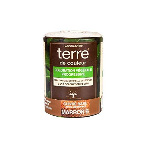 Terre de Couleur Coloration Végétale Marron B 100 g