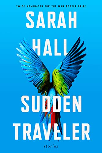 Sudden Traveler: Stories (English Edition)