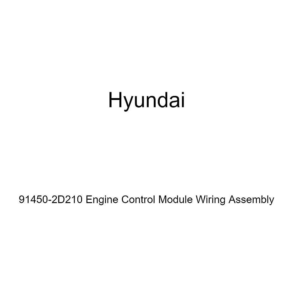 Genuine Hyundai 91450-2D210 Engine Control Module Wiring Assembly
