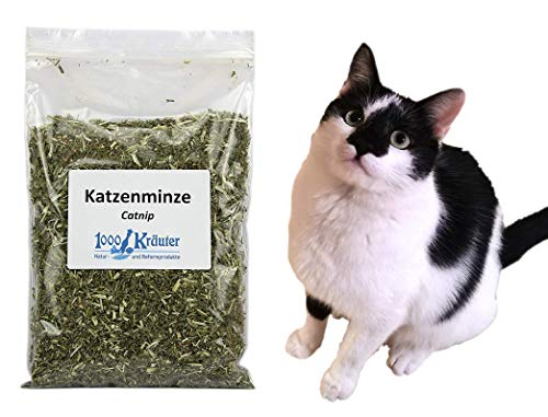 1000Kräuter Katzenminze Catnip für Katzenspielzeug Katzenkraut Katzen Kraut (50g L)