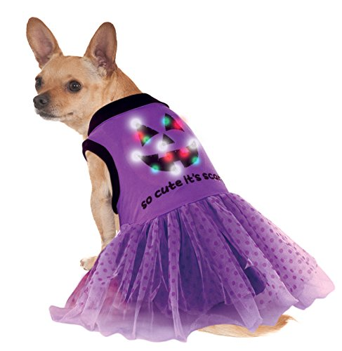 Rubies Costume LED Light-Up Halloween Dog Costume Dress