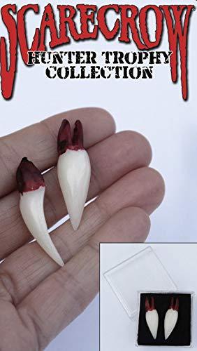 Horror-Shop Dents de vampire comme trophée