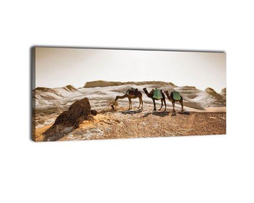 wandmotiv24 Leinwandbild Panorama Nr. 285 Karavane 100x40cm, Keilrahmenbild, Bild auf Leinwand, Kamel Wüste Sand