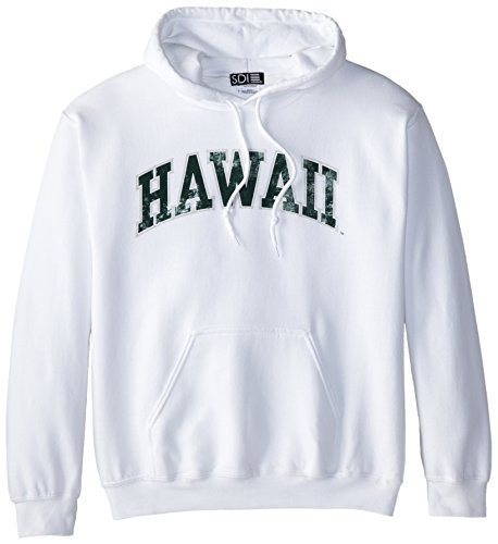 Hawaii Rainbow Warriors 50/50 Blended 8-Ounce Vintage Arch Hooded Sweatshirt, Small, White