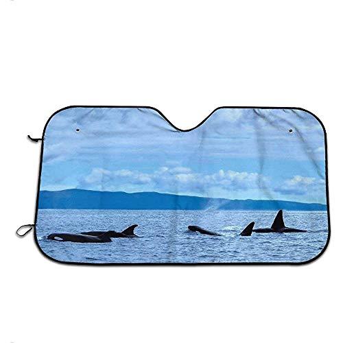 KDU Fashion Auto Sonnenschirm,EIN Großartiges Ziel Für Walbeobachtung Und Ökotourismus Personalisierte Fahrzeug-Sonnenschirme Für Den Minivan Von Kraftfahrzeugen,70 * 130cm