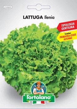 Sementi orticole di qualità l'ortolano in busta termosaldata (160 varietà) (LATTUGA ILENIA)
