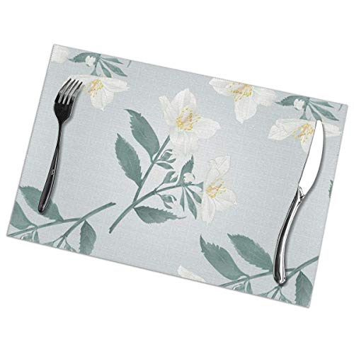 Tcerlcir Placemats Set of 6 Jasmine Flowers with Leaves Heat Resistant Washable Non-slip Place Mats Table Mats for Kitchen Dining Table 18'X12'