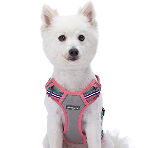 Blueberry Pet Mesh Padded Dog Harness Vest