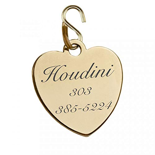 Engraved Shiny Gold Finish Pet Tag ID Charm Pendant for Dogs & Cats Collars Personalized Free Dog Tag Cat Tag (Engrave Name & Number) - Ships from USA