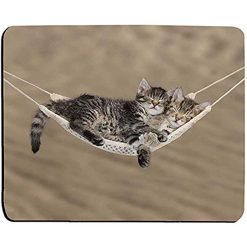 Schattige Tabby Kittens slapen in een hangmat muismat, muismat (katten muismat)
