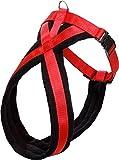 FLAMINGO ASP Cross Harnais pour Chien Rouge 58-70 x 2,5 cm