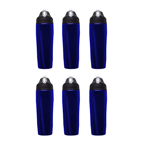 Stainless Steel Water Bottle, 6 pack, 28.5 oz Metal Sports Bottles with Flip Top, Easy Carrying, Blue