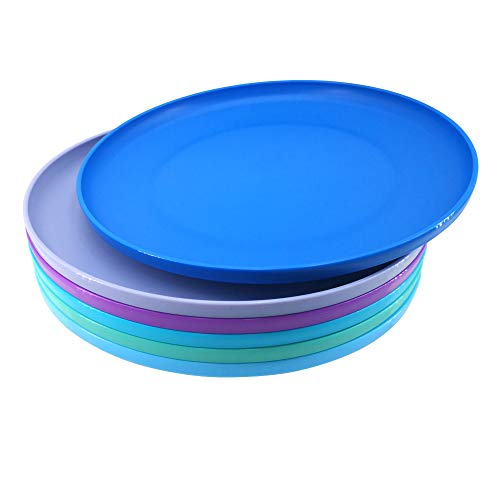 Large Plastic Plates Reusable BPA Free Dishwasher Safe Easy to Clean for Kids Indoor Outdoor Use Set of 6 (Multi-color)