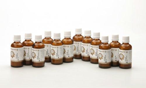 Schüssler Salze 12er Set Globuli Nr. 1-12, 12x50 g