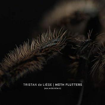 Moth Flutters (Kalaido Remix)