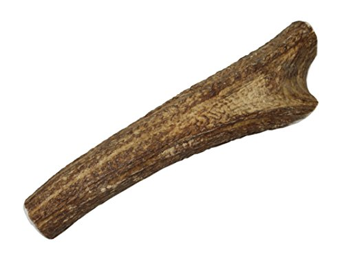 Elkhorn Premium Chews - X Large Whole Premium Grade Elk Antler Dog Bone - Single Pack (1 Piece) - Long Lasting Chew Toy for 50-90 lb Dogs - from Natural Shed Elk Antlers Sourced in The USA