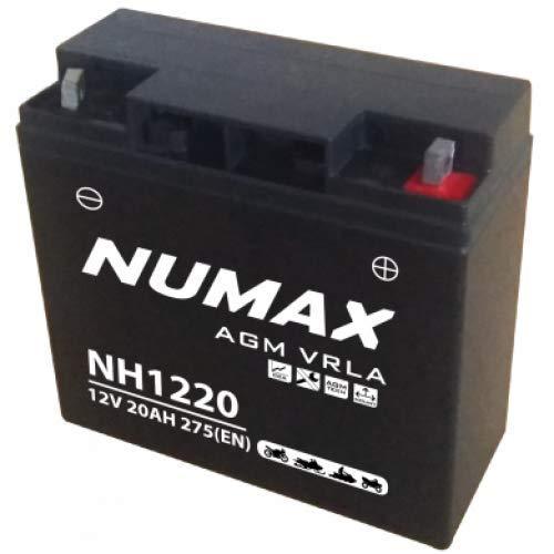 Numax - Batterie moto Numax Premium AGM NH1220 12V 20Ah 275A
