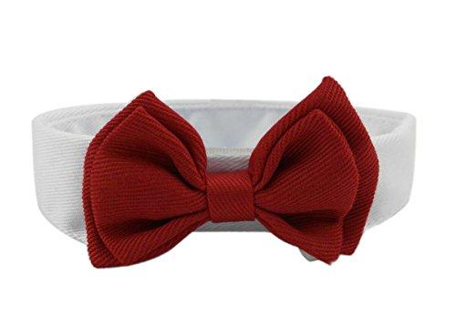 Diyafas 2 x Haustier Hunde Katzen Welpen Krawatte Einstellbar Baumwolle Kragen Rote Fliege Formale Bowknot Halsketten