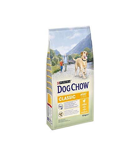 Purina Dog Chow Perro Adulto Classic con Pollo 10kg 🔥