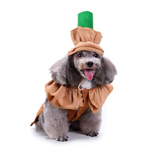 ZCY huisdierkleding voor honden cosplay Kerstmis huisdier hond kat super Vesti stijl, M, H.